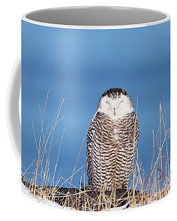 Centered Snowy Owl Coffee Mug