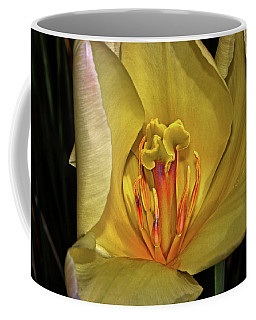 Centerpiece - Grand Opening Yellow Tulip 001 Coffee Mug by George Bostian
