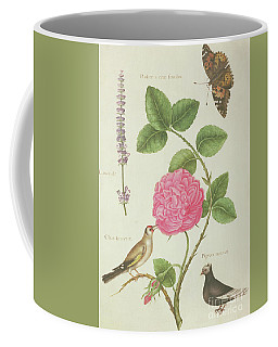 Centifolia Rose, Lavender, Tortoiseshell Butterfly, Goldfinch And Crested Pigeon Coffee Mug