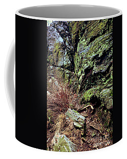 Coffee Mug featuring the photograph Central Park Rock Formation by Sandy Moulder