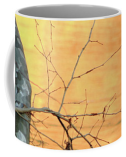 Coffee Mug featuring the photograph Chagrin River Gold by Bruce Patrick Smith