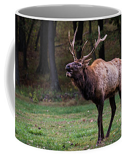 Coffee Mug featuring the photograph Challenger by Andrea Silies