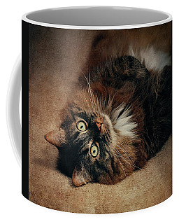 Champagne - My Lazy Main Coon Cat Coffee Mug