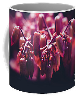Coffee Mug featuring the photograph Chandelier Plant Kalanchoe - A Solitary Morning by Sharon Mau