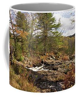 Chapman Falls Coffee Mug