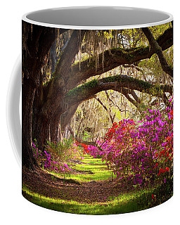 Charleston Sc Magnolia Plantation Gardens - Memory Lane Coffee Mug
