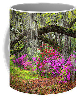 Charleston South Carolina Spring Flowers Lowcountry Landscape Photography Coffee Mug