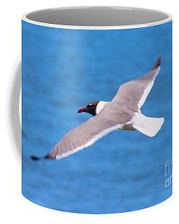 Charleston Wildlife. Seagull Coffee Mug