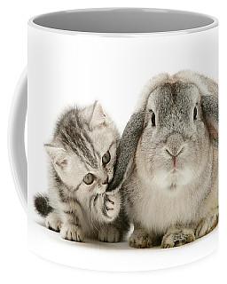 Checking For Grey Hares Coffee Mug