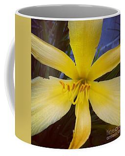 Cheer Coffee Mug