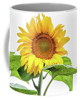 Coffee Mug featuring the photograph Cheerful Flower Cheerful Mood by Jenny Rainbow