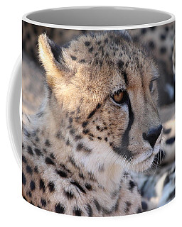 Cheetah And Friends Coffee Mug
