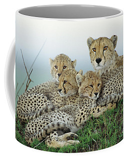 Cheetah And Her Cubs Coffee Mug