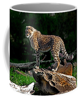 Cheetah Cub Finds Her Pride Rock Coffee Mug