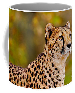 Coffee Mug featuring the photograph Cheetah In A Forest by Nick  Biemans