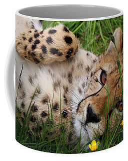 Cheetah In Flowerbed Coffee Mug