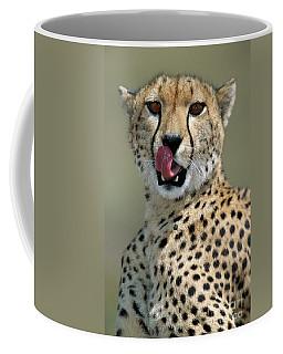 Cheetah Licking  Coffee Mug