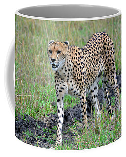 Cheetah On A Walkabout Coffee Mug