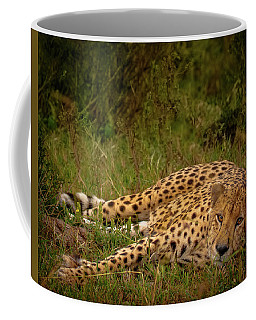 Cheetah Resting, Masai-mara Coffee Mug