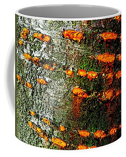Cherry Bark Coffee Mug