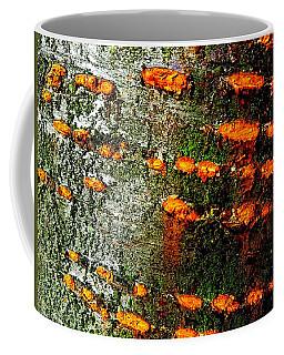 Cherry Bark Coffee Mug