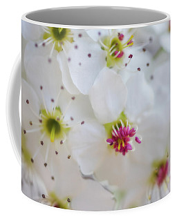 Coffee Mug featuring the photograph Cherry Blooms by Darren White