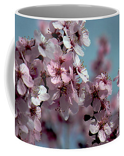 Coffee Mug featuring the photograph Cherry Blossom Beauties by Patricia Strand