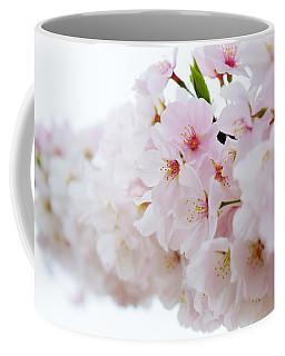 Cherry Blossom Focus Coffee Mug