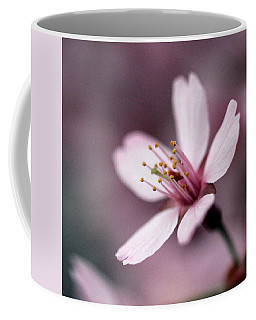 Coffee Mug featuring the photograph Cherry Blossom by Joseph Skompski