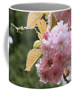 Coffee Mug featuring the photograph Cherry Blossom Secrets by Brandy Little