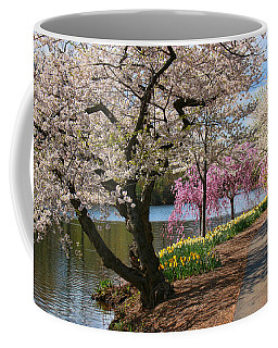 Cherry Blossom Trees Of Branch Brook Park 17 Coffee Mug