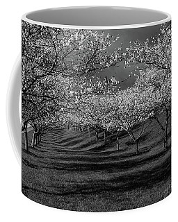 Cherry Blossoms 1 Coffee Mug