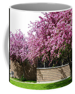 Cherry Blossoms 1 Coffee Mug by Will Borden