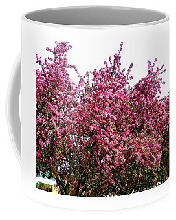 Cherry Blossoms 2 Coffee Mug by Will Borden