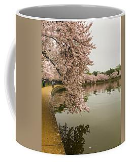 Cherry Blossoms Along The Tidal Basin 8x10 Coffee Mug