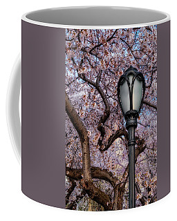 Coffee Mug featuring the photograph Cherry Blossoms At Central Park Nyc by Susan Candelario