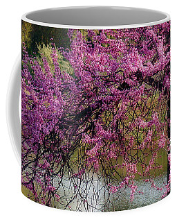 Cherry Blossoms By The Pond Coffee Mug