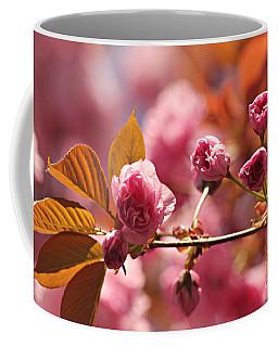 Cherry Blossoms Coffee Mug by Judy Palkimas
