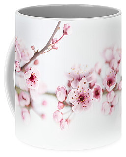 Coffee Mug featuring the photograph Cherry Spring by Rebecca Cozart