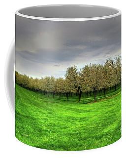 Cherry Trees Forever Coffee Mug by Randy Pollard
