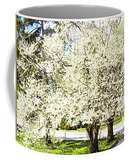 Cherry Trees In Blossom Coffee Mug by Irina Afonskaya