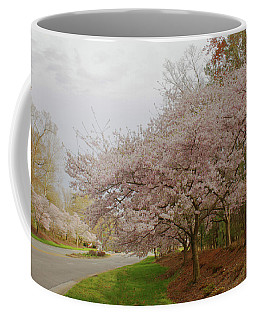 Coffee Mug featuring the photograph Cherry Trees On Canon Blvd by Ola Allen