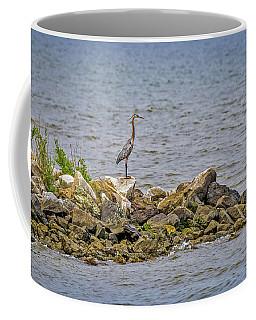 Chesapeake Bay Great Blue Heron Coffee Mug