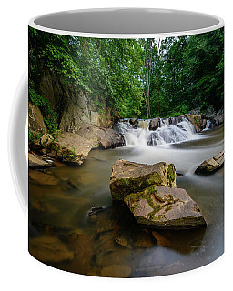 Chestnut Creek Falls  Coffee Mug
