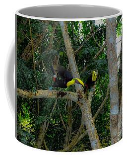 Chestnut-mandibled Toucans Coffee Mug