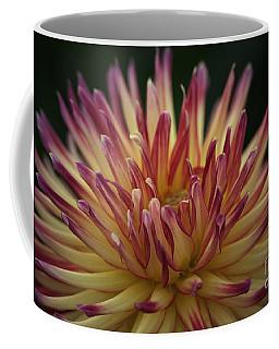 Chiaroscuro Dahlia Coffee Mug