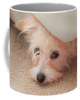 Chica In Hiding Coffee Mug