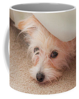 Chica In Hiding Coffee Mug