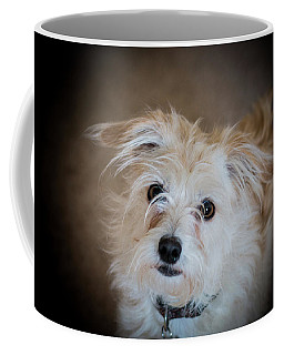 Chica On The Alert Coffee Mug