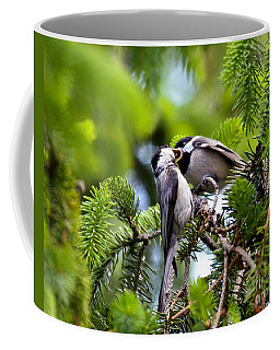 Chickadee Feeding Time Coffee Mug by Kerri Farley